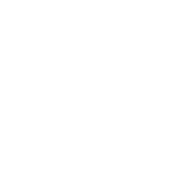 demenagement international